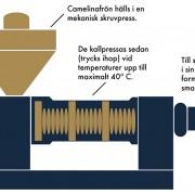 Skillnaden mellan kallpressad eller varmpressad olja