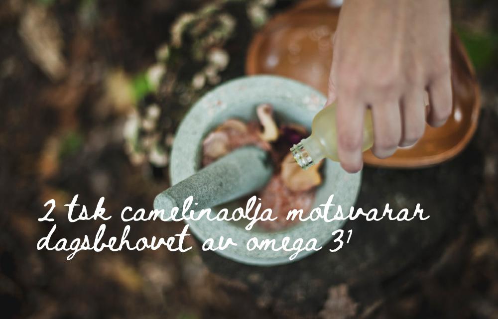 Två teskedar Camelinaolja ger dagsbehovet av omega 3